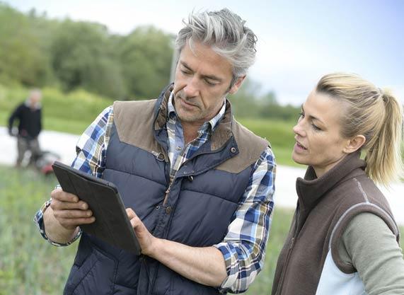 conseil en patrimoine immobilier, agricole et foncier
