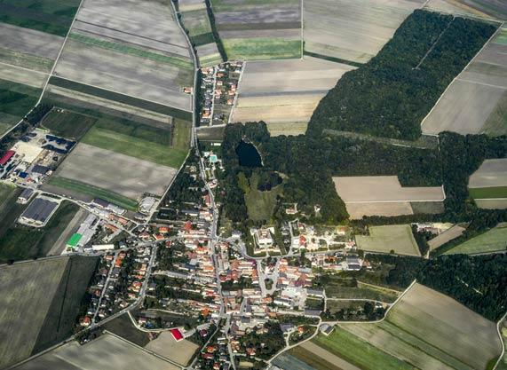 gestion de patrimoine immobilier, foncier et agricole